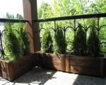 Балконные ящики для цветов-7-5