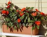 Балконные ящики для цветов-7-6