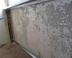Плесень и грибок на стенах-7-1