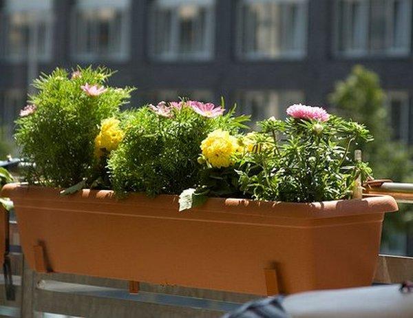 Балконные ящики для цветов - пластиковые, деревянные, руково.